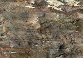 Corkstyle Fantasy Stone Fossil