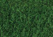 Corkstyle Fantasy Stone 6 мм Green