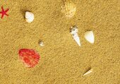 Пробковый пол Corkstyle Fantasy Stone 6 мм Sandstrand