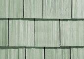Cedar Pride Кипарис / Cypress Green