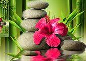 Кухонный фартук ХДФ Бамбук и цветок