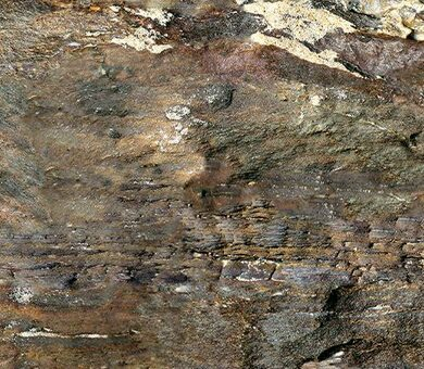 Fantasy Stone Fossil 6 мм