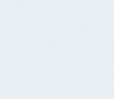 Ламинированная панель ПВХ Век Белая