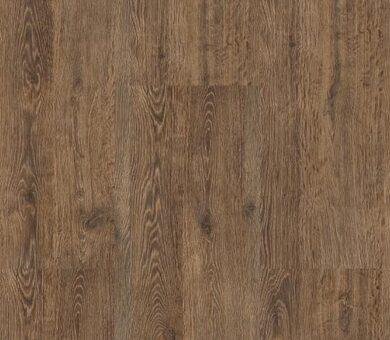Напольная клеевая пробка Corkstyle New collection Oak Brushed 6 мм