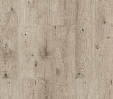 Напольная клеевая пробка Corkstyle New collection Oak Grey 6 мм