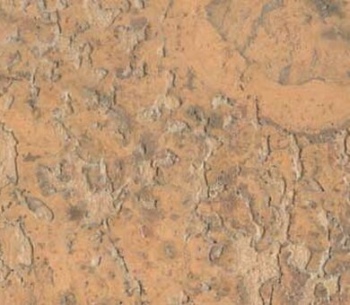 Пробка настенная Corksribas (КоркРибас) wall, Virgem Camel, 3мм