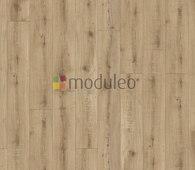 Виниловый ламинат Moduleo Select Dryback 22237 Brio Oak