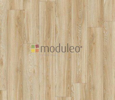 Виниловый ламинат Moduleo Transform Dryback 22220 Blackjack Oak