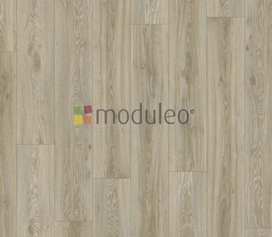 Виниловый ламинат Moduleo Transform Dryback 22246 Blackjack Oak